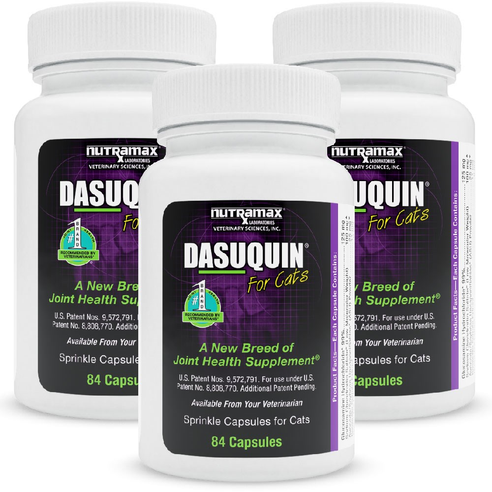 3pack dasuquin for cats 252 caps ebay. Black Bedroom Furniture Sets. Home Design Ideas