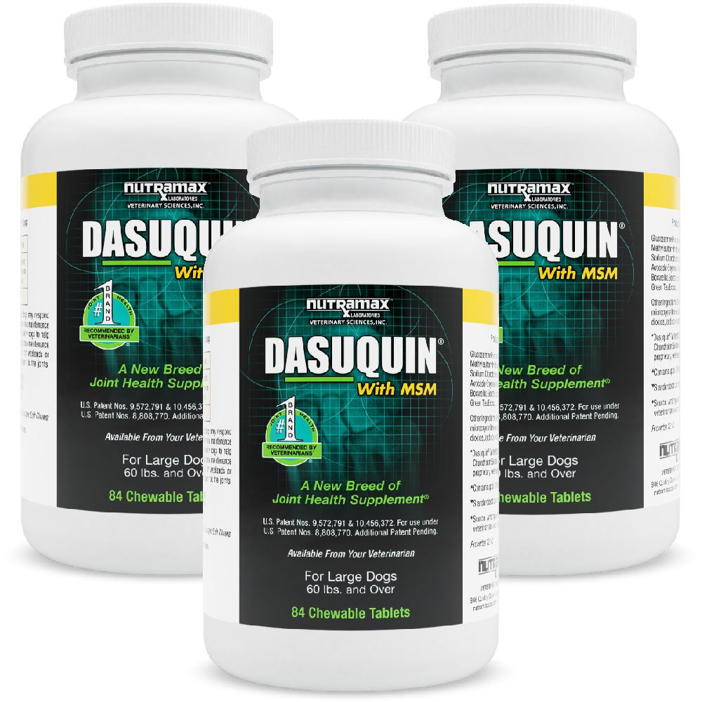 3pack dasuquin for large dogs 60 lbs over with msm 252 chewable tabs ebay. Black Bedroom Furniture Sets. Home Design Ideas
