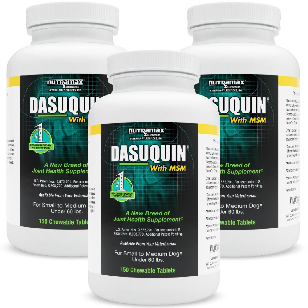 3 pack dasuquin for small medium dogs under 60 lbs with msm 450 chews ebay. Black Bedroom Furniture Sets. Home Design Ideas