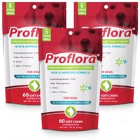 Dog Suppliesfood Supplementsprobiotics & Digestion Supplementsproflora™ Probiotics
