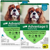 12 MONTH Advantage II Flea Control Medium Dog for Dogs 1120 lbs