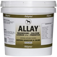 Allay® Antacid Buffer & Calmer for Horses (10 lbs)