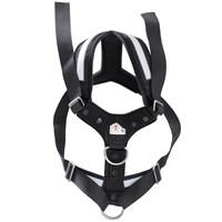 AllSafe Harness - Medium