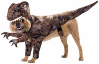 Raptor Dog Costume (Large)