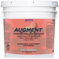 Augment® Vitamin & Mineral Balancer for Horses (10 lbs)