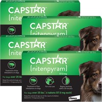 4 PACK CAPSTAR Green for Dogs over 25 lbs(24 tablets)