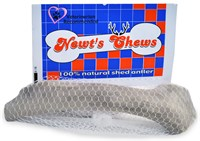 Newt&#39;s Chews Natural Shed Deer Antler - Medium (6&quot; - 8.5&quot;)