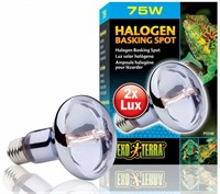 Exo Terra Halogen Basking Spot (75 W)