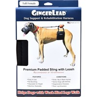Dog Suppliespet Home & Travel Essentialspet Assistance Stairs & Rampsgingerlead Dog Support & Rehabilitation Harness