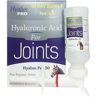 Hyalun PRO 30 Oral Hyaluronic Acid 3 oz (90 ml)