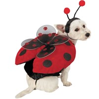 Ladybug with Wings Dog Costume - XSMALL