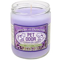 Pet Odor Exterminator Candle - Lavender with Chamomile Jar (13 oz)