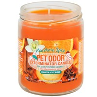 Pet Odor Exterminator Candle™ - Mandarin Spice Jar (13 oz)