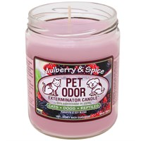 Pet Odor Exterminator Candle™ - Mulberry & Spice Jar (13 oz)