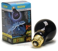 Night Glo Neodymium Moonlight Lamp (50 WATTs)