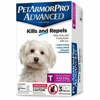 PetArmor Pro Advanced Toy (4-10 lbs) - 3 Pack