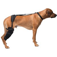 Pet Therapy Wrap with Therapy Gel - Stifle (Large)
