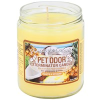 Pet Odor Exterminator Candle - Pineapple Coconut Jar (13 oz)