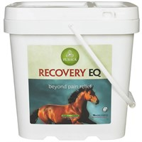 Horse & Livestock Productshorse Bone Joint & Muscle Carerecovery Horse Joint Care