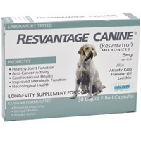 Dog Suppliesfood Supplementsvitaminsresvantage For Dogs And Cats