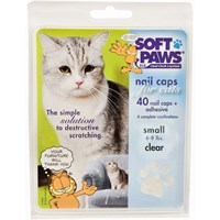 Soft Paws for Small Cats