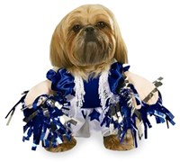 Spirit Paws Dog Costume - XLARGE