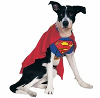 Superman Dog Costume - Large
