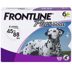 6 MONTH Frontline PLUS Purple for Dogs 45-88 lbs