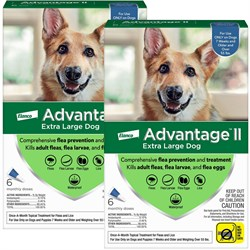 12 MONTH Advantage II Flea Control Extra Large Dog for Dogs Over 55 lbs