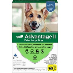 6 MONTH Advantage II Flea Control Extra Large Dog (for Dogs Over 55 lbs.)