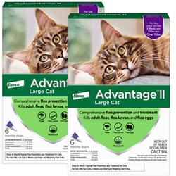 12 MONTH Advantage II Flea Control Large Cat for Cats over 9 lbs