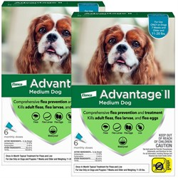 12 MONTH Advantage II Flea Control Medium Dog for Dogs 11 20 lbs