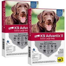 12 MONTH K9 ADVANTIX II BLUE Extra Large Dog for dogs over 55 lbs
