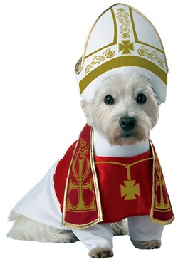Image of Animal Planet Holy Hound Dog Costume - X-Small