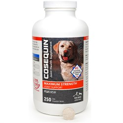 Image of Cosequin DS PLUS MSM Chewable Tablets (250 Count)