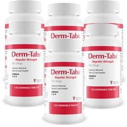 Image of 6-PACK Derm-Tabs® Regular Strength for Dogs (720 Chewable Tablets)