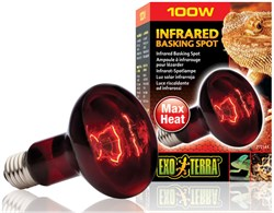 Image of Exo Terra Heat-Glo Infrared Spot Lamp (100 W)