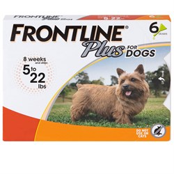 6 MONTH Frontline PLUS Orange for Dogs 0-22 lbs