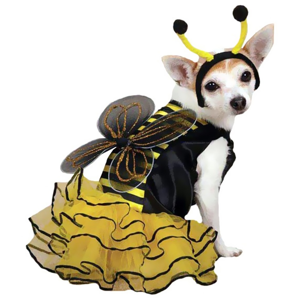 Casual Canine Bee Mine Costume Yellow - XSMALL