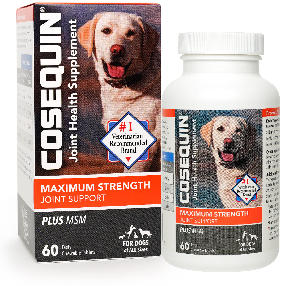 Cosequin DS PLUS MSM Chewable Tablets (60 Count)