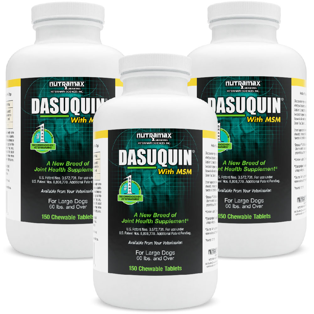 3-PACK Dasuquin for Large Dogs 60 lbs. &amp; over with MSM (450 Chews)