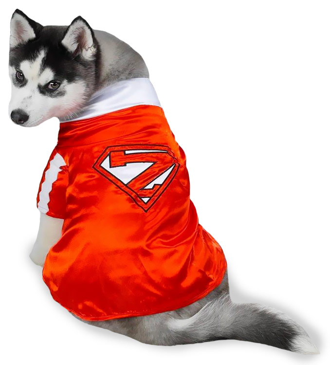 Casual Canine Mighty Mutt Pet Costume - LARGE