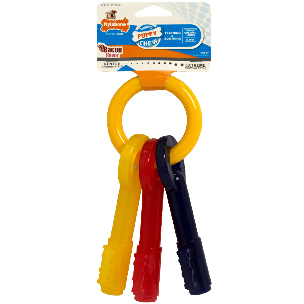 Nylabone Puppy Teething Keys - LARGE (7.75&quot;)