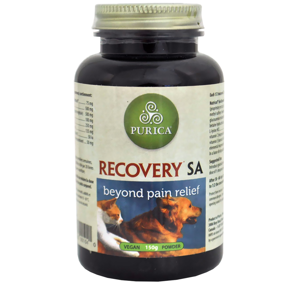 Recovery SA Powder (150g)