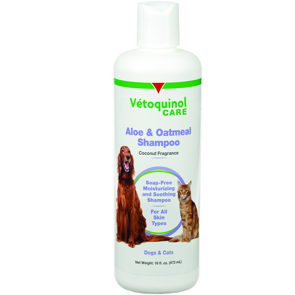 Vet Solutions Aloe &amp; Oatmeal Shampoo (16 oz)