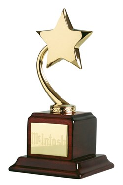 Shooting Star Recognition Award