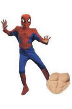 Child Deluxe Spiderman Costume 5110L