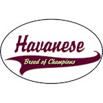 Havanese T-Shirt Breed of Champions
