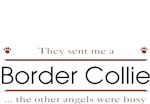 Border Collie T-Shirt Other Angels