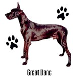 Great Dane T-Shirt Styling With Paws